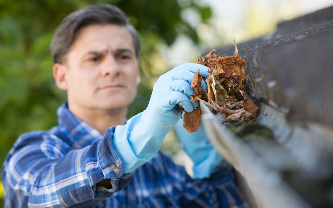 Four Ways to Clean Your Gutters This Fall