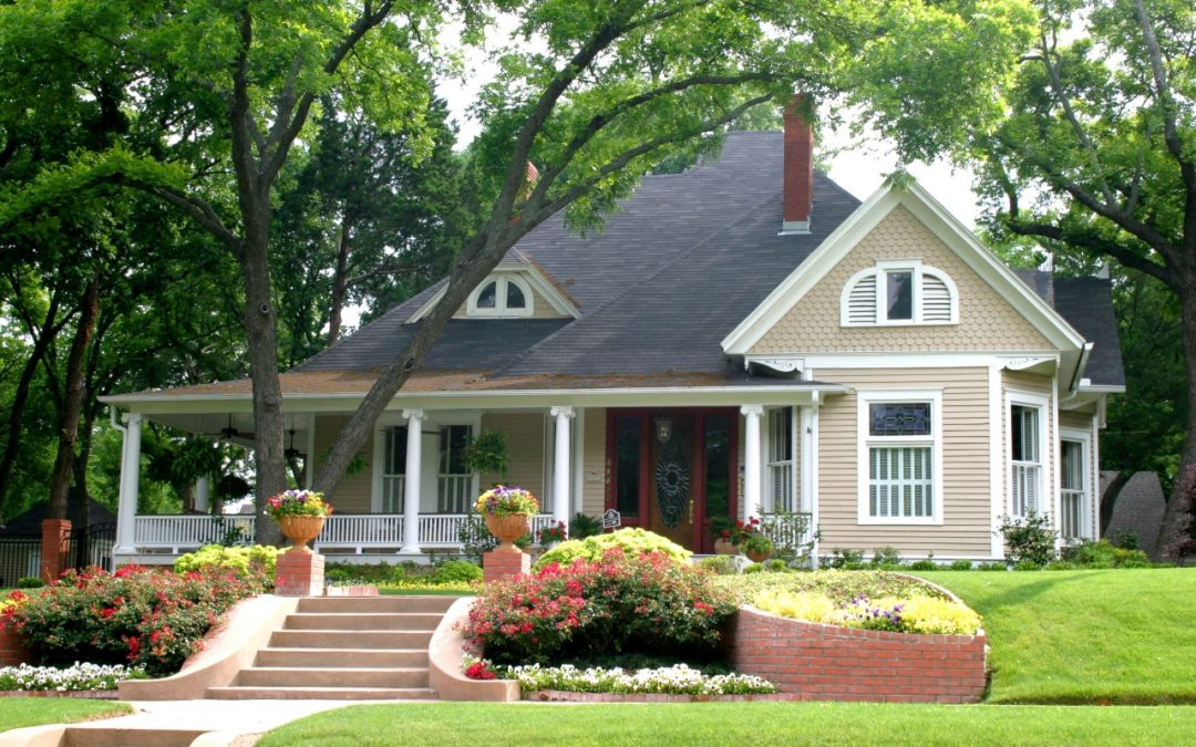 keep trees around your home healthy