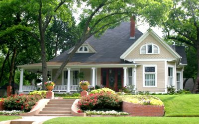How to Keep Trees Around Your Home Healthy